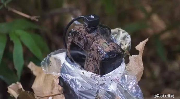 jeff cremer早前在亚马逊森林中放置了一部特制的红外线陷阱相机,使用