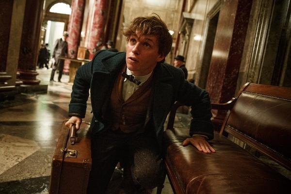 《哈利·波特》衍生电影《神奇动物在哪里》首个正