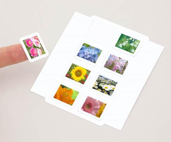 秀外慧中,佳能发布小型照片打印机炫飞SELPHY CP1200