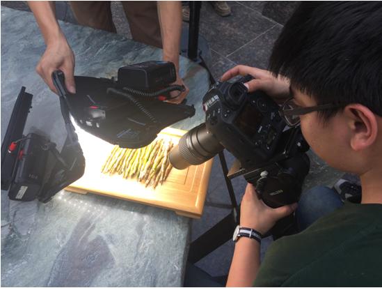 瑞丽绽放——佳能EOS-1D X Mark II瑞丽市拍摄手记