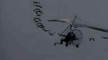 那些年没有无人机,我们开滑翔机去航拍!