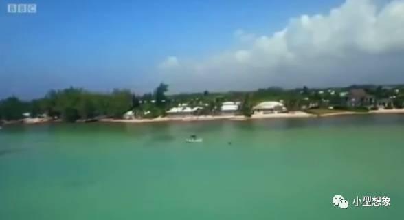 小型日报 |《英国关键词岛屿:开曼岛揭秘》