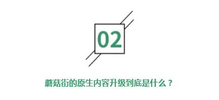 历经三生三世,蘑菇街如何凭借视频营销成为中国电商第四极?