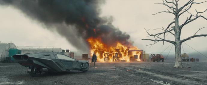 就冲着迪金斯的摄影,《银翼杀手2049》这个片必看