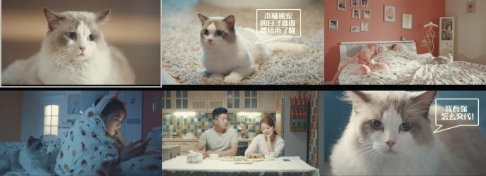 腾讯猫片《说好的暑假呢》调色分享