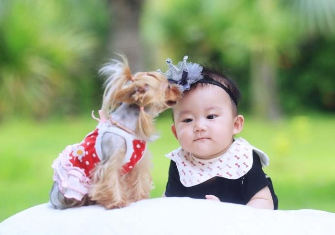 可爱宝宝与萌狗狗