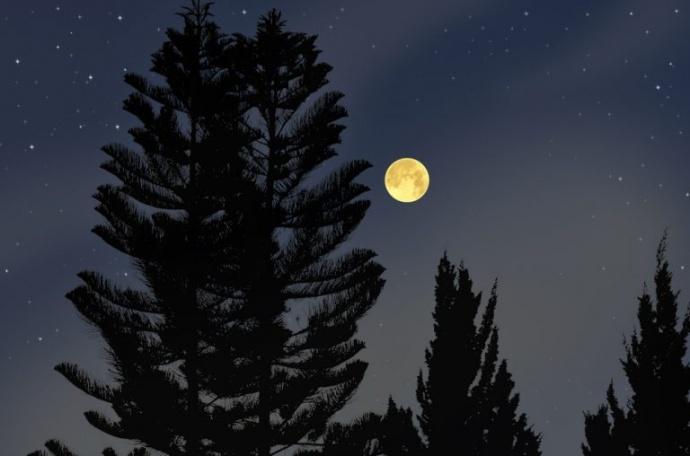 真实的月光与电影拍出来的颜色不一样,为什么?