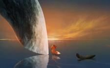 绝美动画短片《狐狸与鲸鱼》,每一帧都能当壁纸