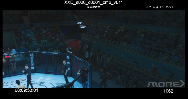 MORE VFX《羞羞的铁拳》视效解析 Part3.LGT & ANI