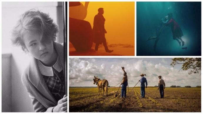 2017年最优秀的十部电影摄影作品